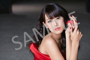 160121_animega.jpg