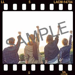 18020801-deadapple.jpg