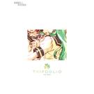 CD BOX ~ Trifoglio ~